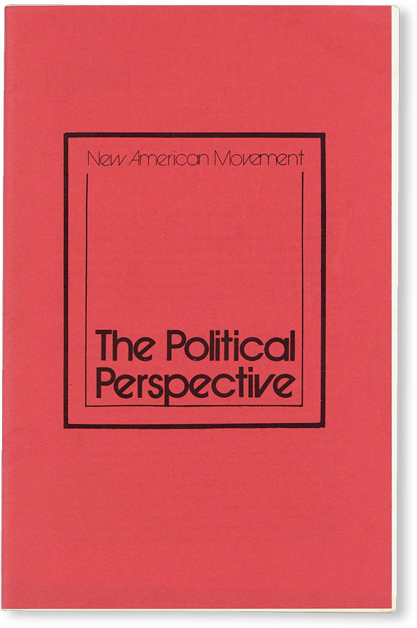 NAM: The Political Perspective. NEW AMERICAN MOVEMENT, DEMOCRATIC SOCIALISM.