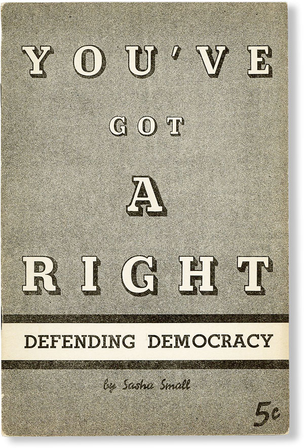 You've Got A Right: Defending Democracy. Sasha SMALL